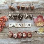 Вдохновение октября